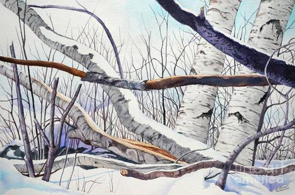 Painting - Fallen Birch Trees After The Snowstorm In Watercolor by Christopher Shellhammer