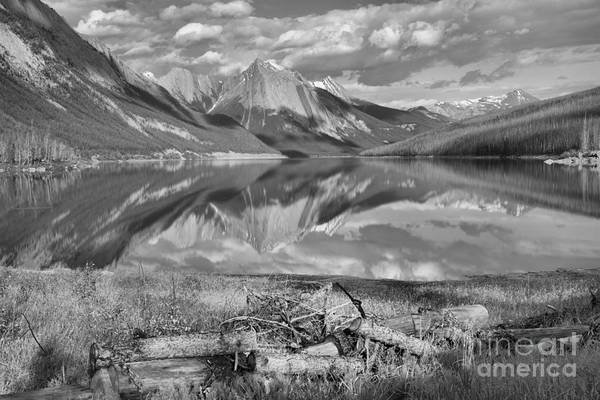 Photograph - Fallen Logs At Medicine Lake Black And White by Adam Jewell