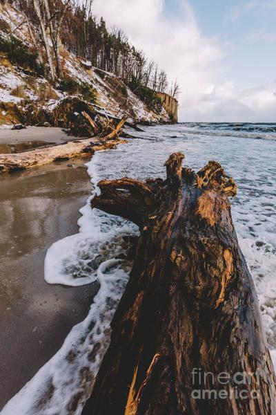 Wall Art - Photograph - Fallen Tree Laying On A Beach. by Michal Bednarek