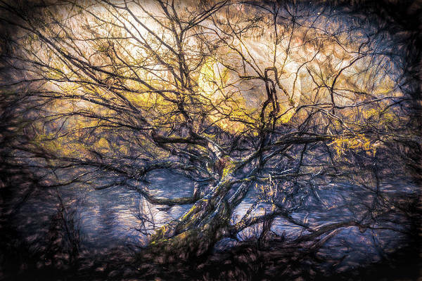 Photograph - Falling Leaves Over The River by Debra and Dave Vanderlaan