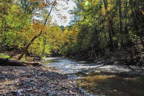 Wall Art - Photograph - Falling Leaves - Wissahickon Creek by Bill Cannon