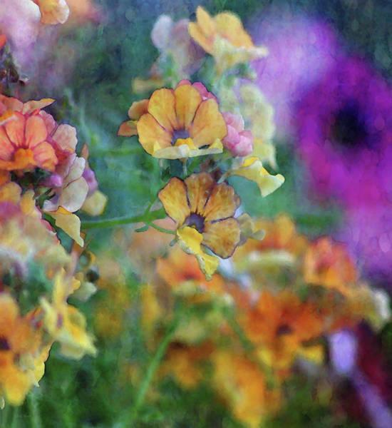 Photograph - Falling Orange Petals 6608 Idp_2 by Steven Ward