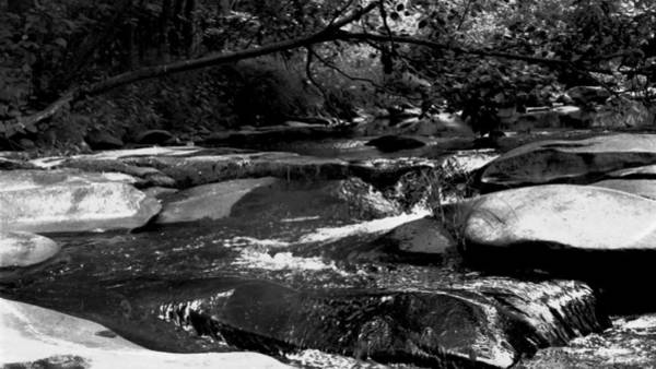 Kaaterskill Clove Photograph - Falling Waters Of The Kaaterskill by Terrance DePietro
