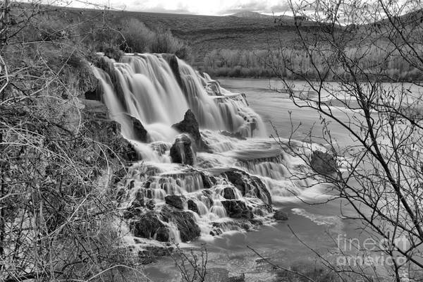 Photograph - Falls Creek Falls Through The Brush Landscape Black And White by Adam Jewell