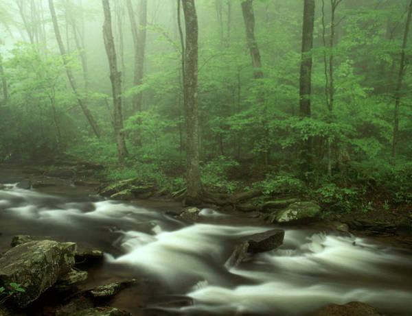Wall Art - Photograph - Falls Of Hills Creek, West Virginia by Michael Gadomski