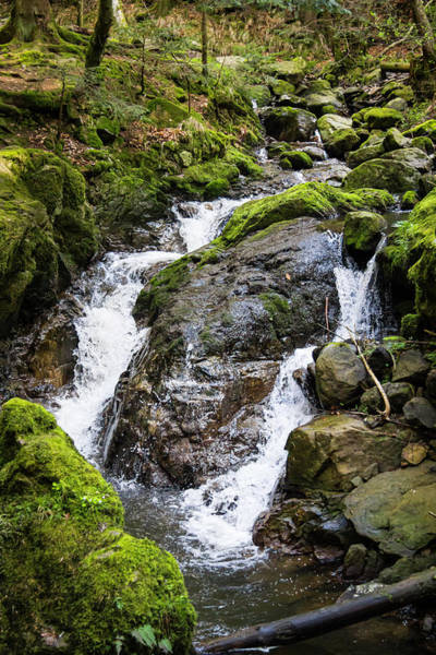 Wall Art - Photograph - Falls On The Ravenna Stream by Teresa Mucha