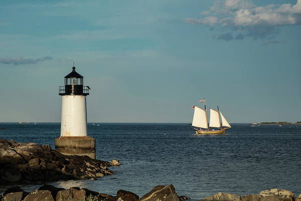 Photograph - Fame Sailing Into Salem Harbor by Jeff Folger