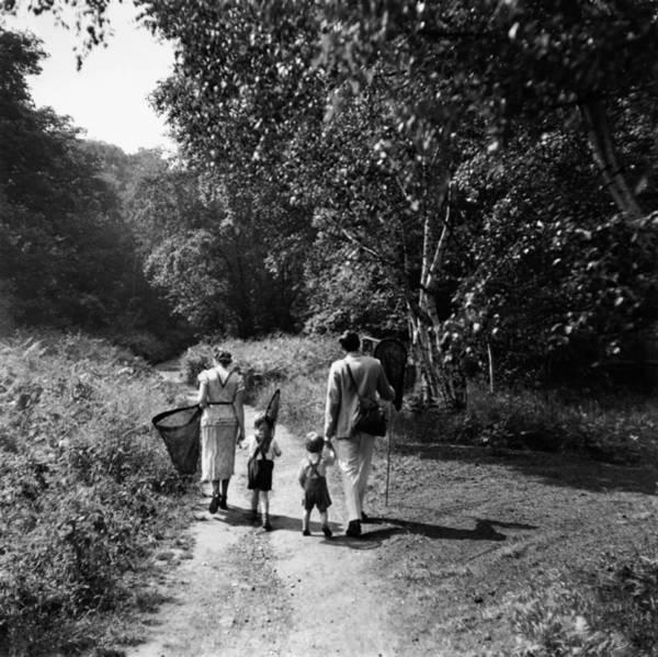 Family Carrying Butterfly Nets, Rear Art Print