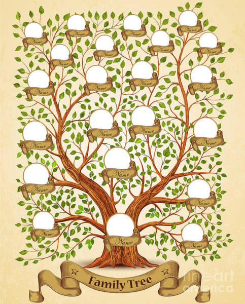 Roots Wall Art - Digital Art - Family Tree Template Vintage Vector by Yayasya