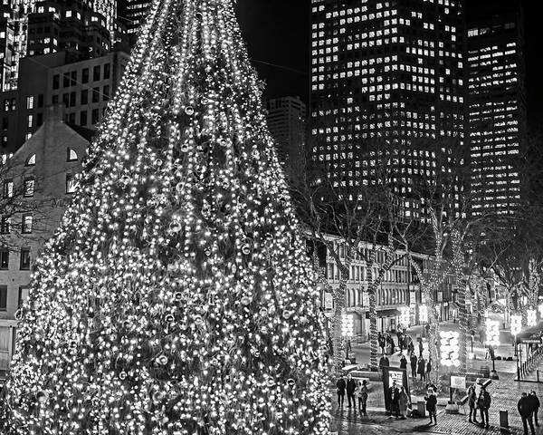 Photograph - Faneuil Hall Christmas Tree 2018 Boston Ma Black And White by Toby McGuire