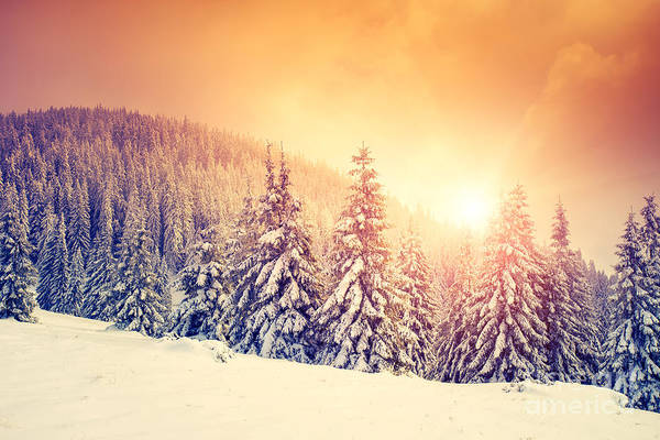 Hoarfrost Wall Art - Photograph - Fantastic Evening Landscape In A by Creative Travel Projects
