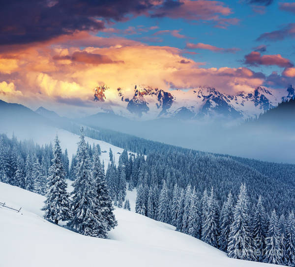 Beautiful Sunrise Photograph - Fantastic Winter Landscape. Dramatic by Creative Travel Projects