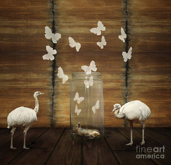 Wall Art - Photograph - Fantasy Artistic Composition With A by Valentina Photos