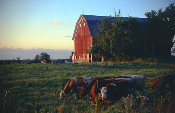 Photograph - Farm At Sunset by Carl Young