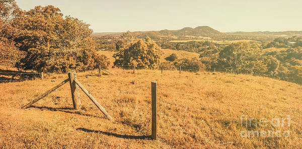 Grassland Photograph - Farm Fields Of Eumundi, Sunshine Coast by Jorgo Photography - Wall Art Gallery