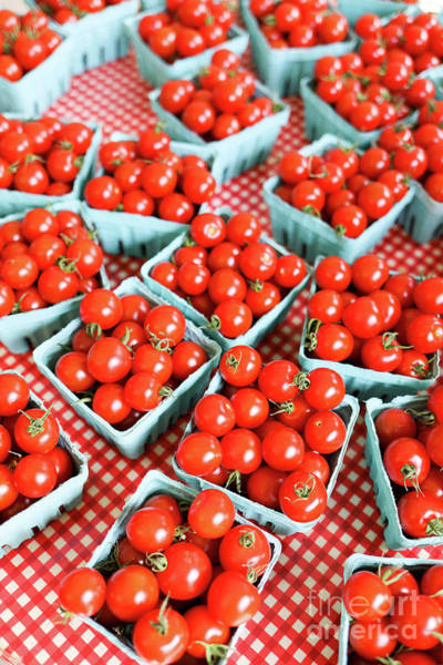 Photograph - Farm Fresh Cherry Tomatoes by Edward Fielding