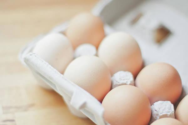 Texas A Photograph - Farm Fresh Eggs by Julia Goss