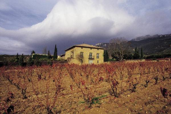 Farm Photograph - Farm Of Remelluri View Of The Vineyards by Pepe Franco