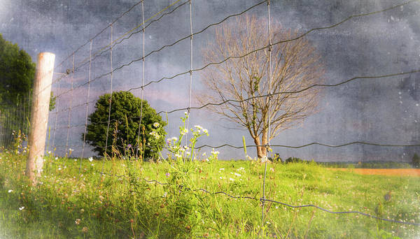 Photograph - Farm Scene - A New Perspecitve by Garvin Hunter