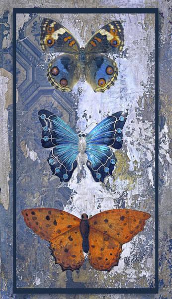 Patina Digital Art - Farmhouse Butterflies by Tim Palmer