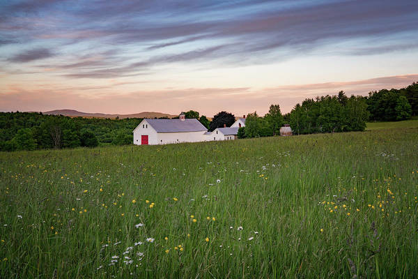 Photograph - Farmhouse In Spring by Darylann Leonard Photography