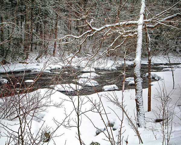Photograph - Farmington River - Northern Section by Tom Cameron