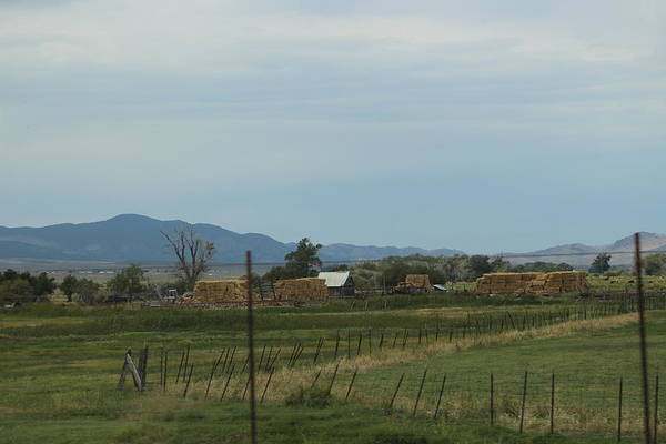 Photograph - Farmland In Utah by Colleen Cornelius