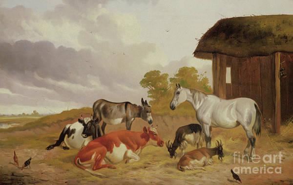 Wall Art - Painting - Farmyard Companions by John Alfred Wheeler