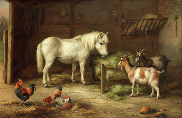 Wall Art - Painting - Farmyard Companions by Edgar Hunt