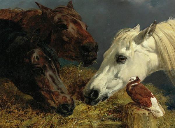 Wall Art - Painting - Farmyard Friends, 19th Century by John Frederick Herring