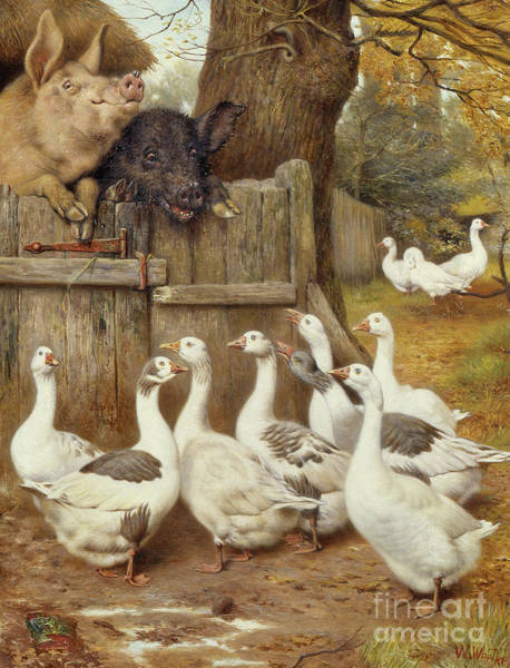 Wall Art - Painting - Farmyard Friends by William Weekes
