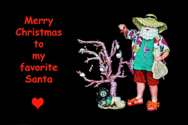 Photograph - Favorite Tropical Santa Decorating The Christmas Tree by Kay Brewer