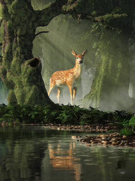 Digital Art - Fawn In The Forest by Daniel Eskridge