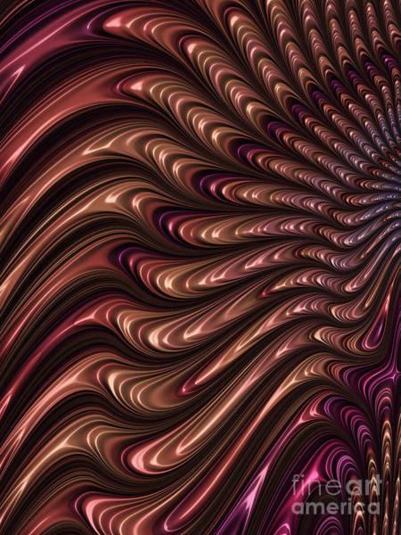 Web Digital Art - Feathered by John Edwards