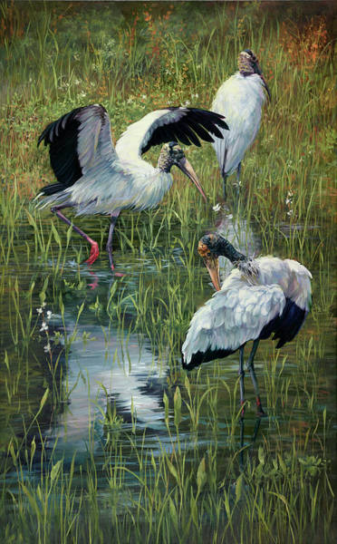 Stork Painting - Feathers Ruffled by Laurie Snow Hein