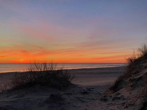 Photograph - February 26, 2019 Pea Island by Barbara Ann Bell