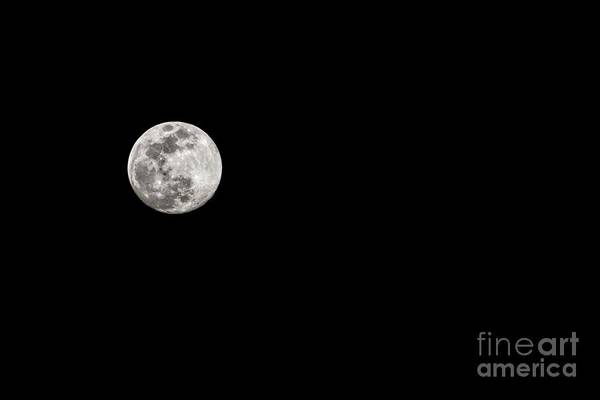 Photograph - February Full Worm Moon by Jon Burch Photography