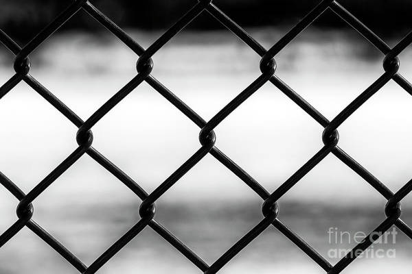Photograph - Trapped On The Wrong Side by John Rizzuto
