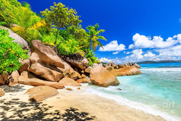 Photograph - Felicite Island Seychelles by Benny Marty