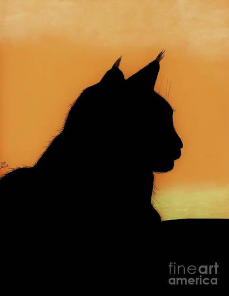 Drawing - Feline - Sunset by D Hackett