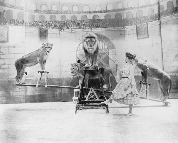 Caucasian Photograph - Female Lion Tamer Performing B&w by Fpg