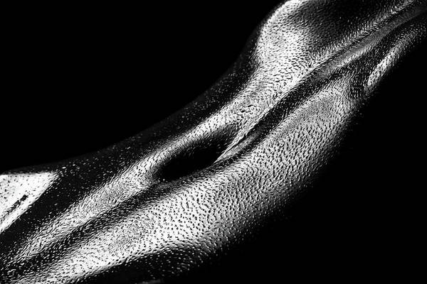 Muscular Wall Art - Photograph - Female Oily Stomach Close-up by Johan Swanepoel