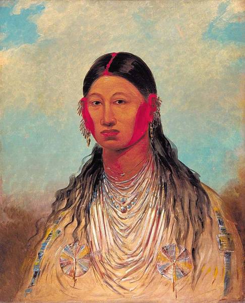 Wall Art - Painting - Female, War Eagle by George Catlin
