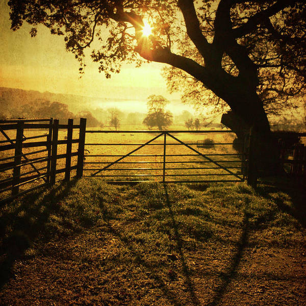 Fence Photograph - Fence At Sunset by Steve Fleming