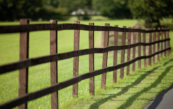 Fence Photograph - Fence In Sunshine by Peter Chadwick Lrps