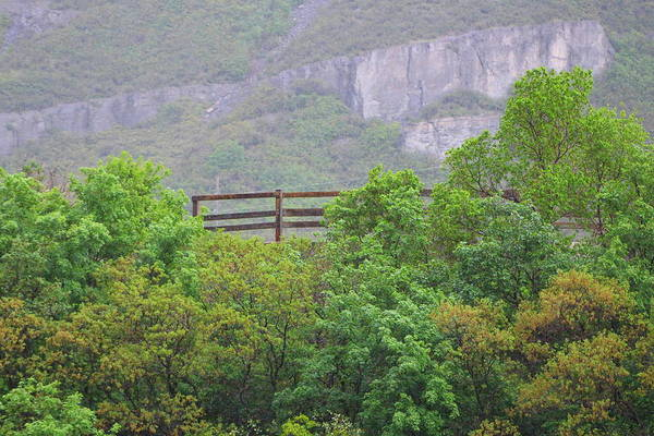 Photograph - Fence Near Bridal Falls by Colleen Cornelius