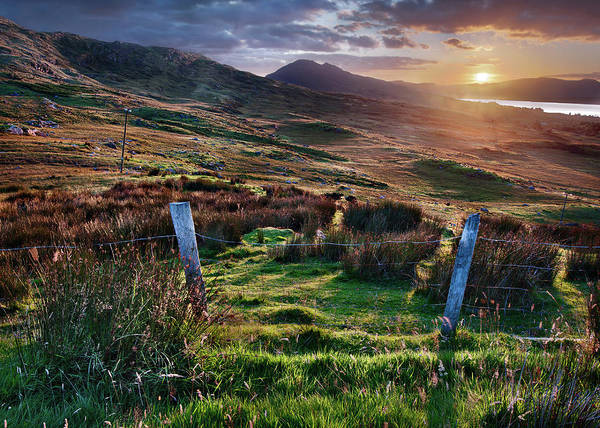 Killarney Photograph - Fenced In by Colin Croke Photography