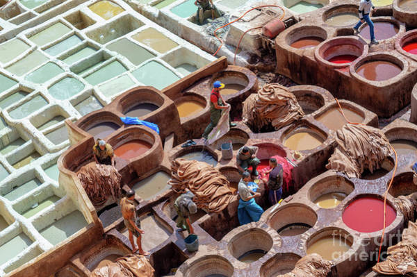 Wall Art - Photograph - Fez Tanneries In Morocco by Louise Poggianti