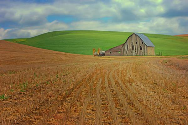Wall Art - Photograph - Field And Barn by Nikolyn McDonald