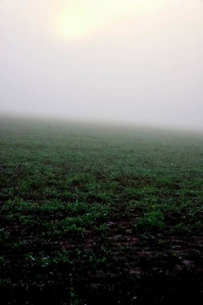 Photograph - Field Foggy Sunrise by Jerry Sodorff